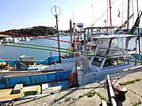 Wagu01